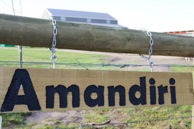 Our-Centre-Amandiri